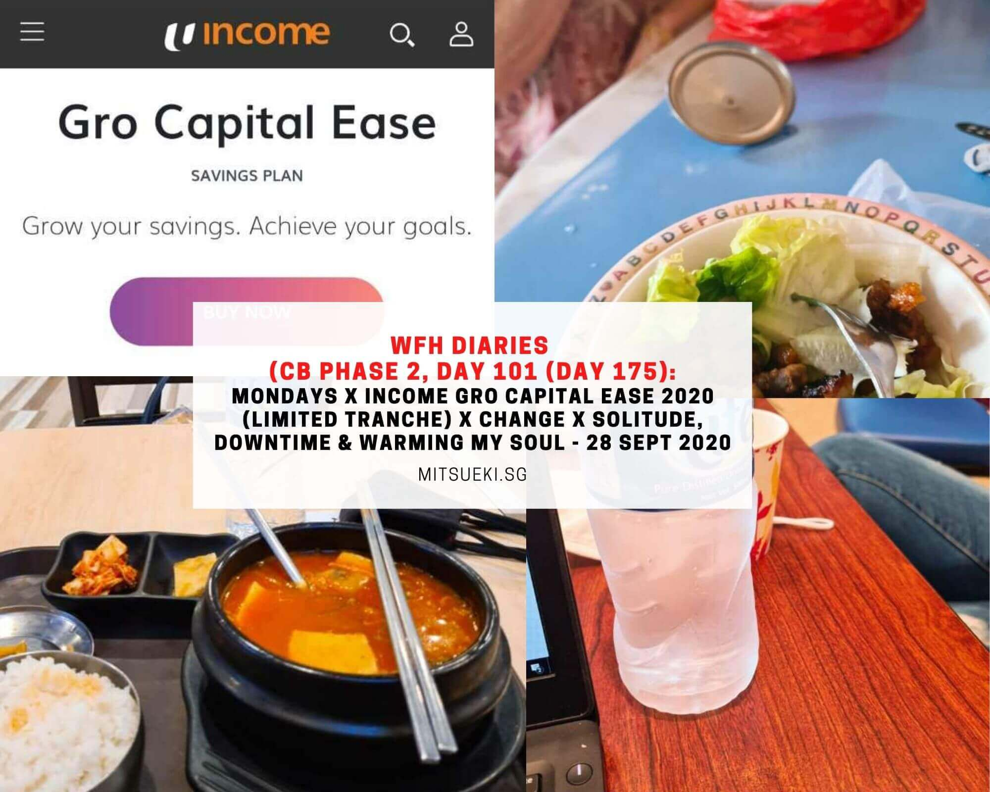 wfh diaries income gro capital ease