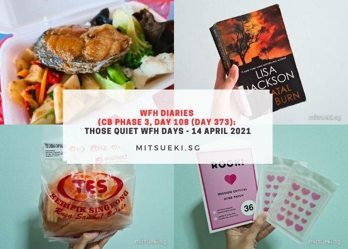 wfh diaries wfh days