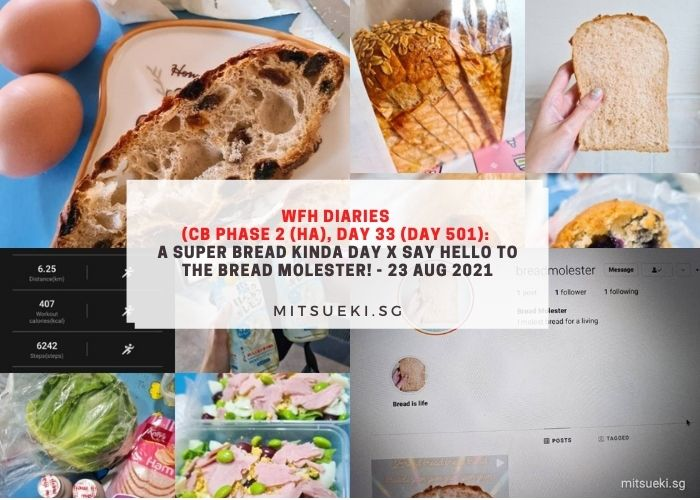wfh diaries bread molester