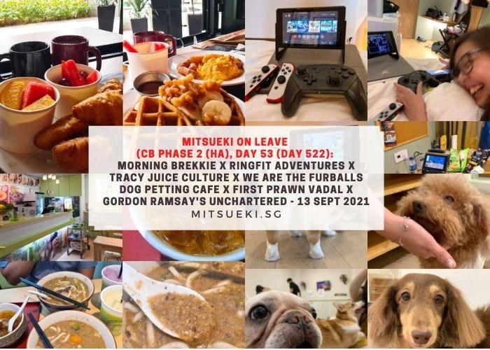 mitsueki on leave dog petting cafe